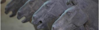 HISTORY OF HORSE SADDLES