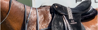 HOW TO CHOOSE MY IDEAL POLO SADDLE?